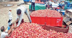 'कोल्ड चेन परियोजना' अनाज, फलों और सब्जियों की भारी बर्बादी में कमी