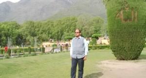 कश्मीर में ट्यूलिप की खेती- पर्यटकों के लिए आकर्षण